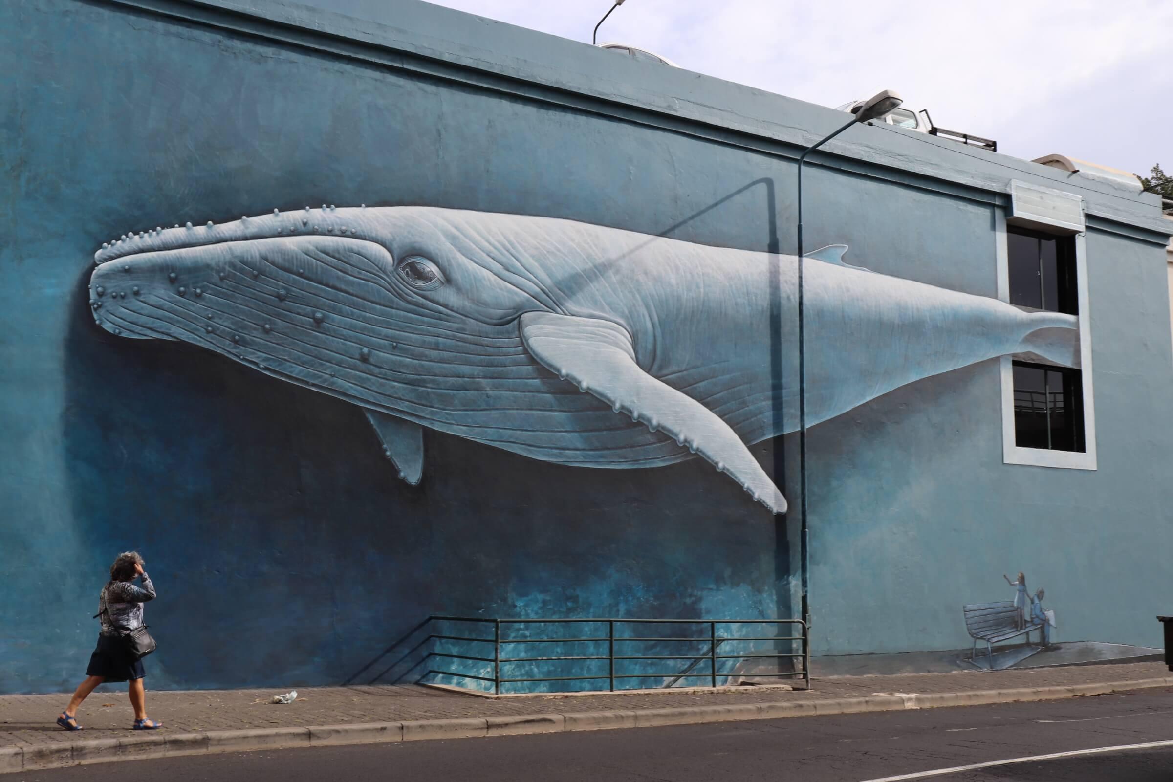 Уличное искусство Фуншала